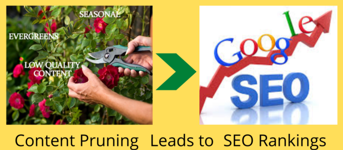 Content Pruning SEO