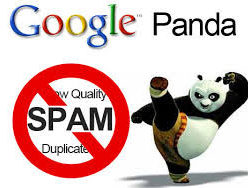 History of Content pruning SEO - Panda Update